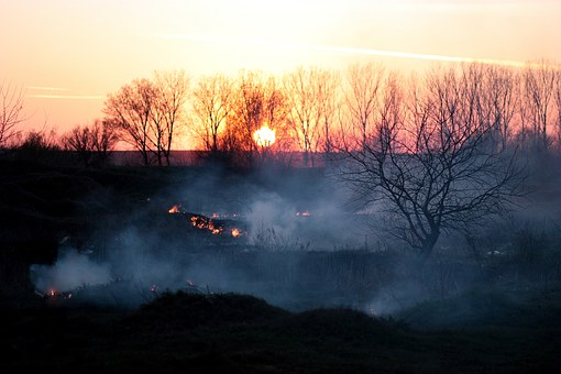 katastrofa smoke-1265659__340