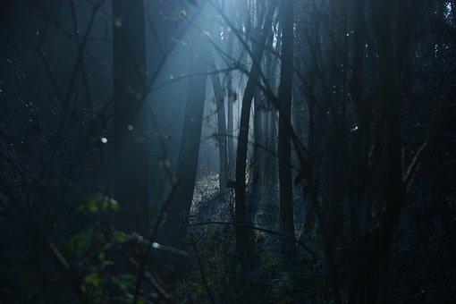 stan dark-1936954__340
