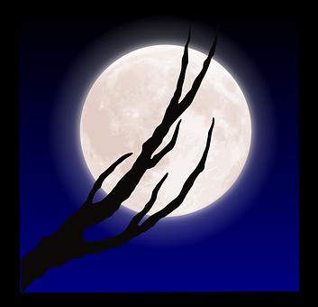 stan halloween-2026439__340