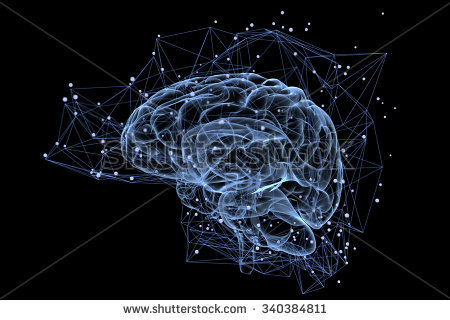 stock-photo-illustration-of-the-thought-processes-in-the-brain-340384811