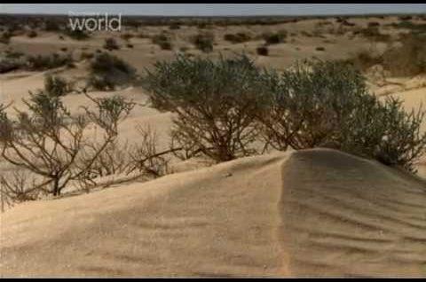 Wielkie Bitwy Pancerne – Bitwy Pod El Alamein