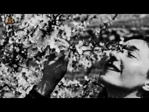 Polscy bohaterowie wojenni – Krystyna Skarbek